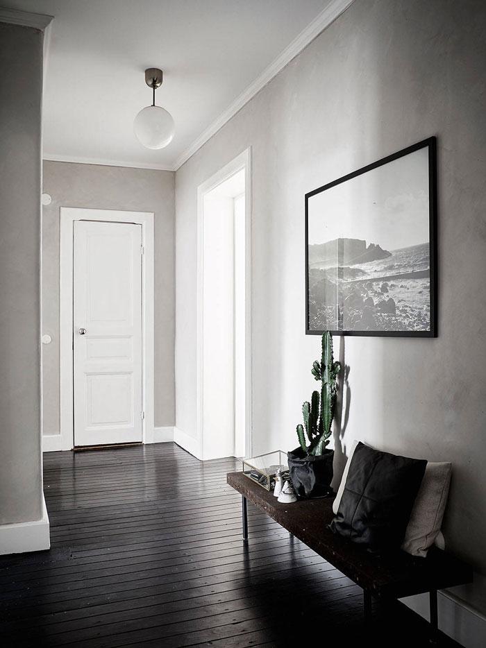 cactus, hallway,