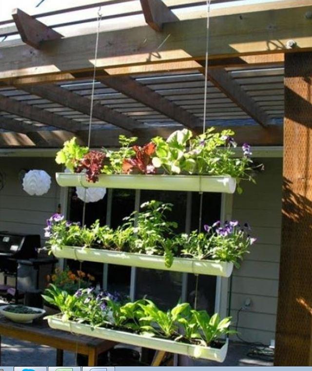 Estanter as para plantas isern 39 s gallery - Estanterias para plantas ...