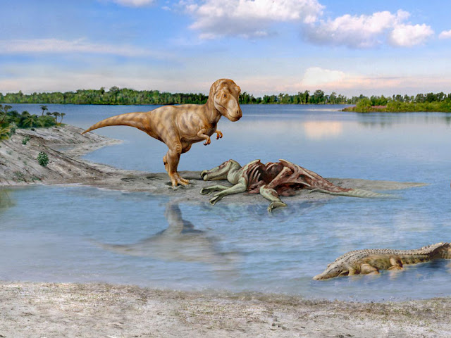 Mammals evolved faster after dinosaur extinction