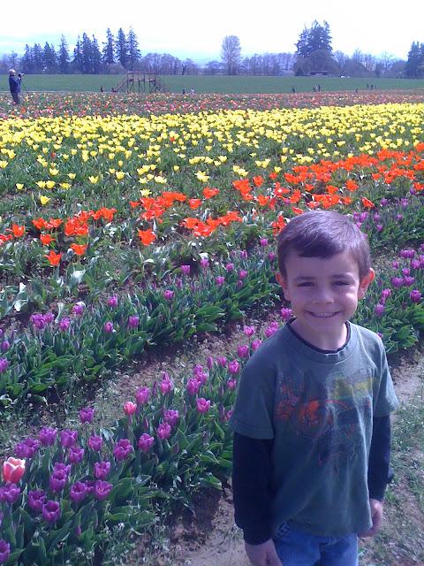 Tulip Festival Woodburn, OR