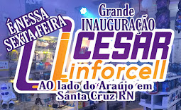 CESAR INFORCELL