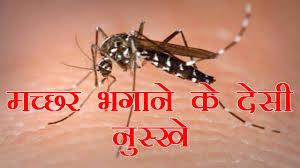 मच्छर कैसे भगाये जानिए मच्छर भगाने घरेलू उपाय