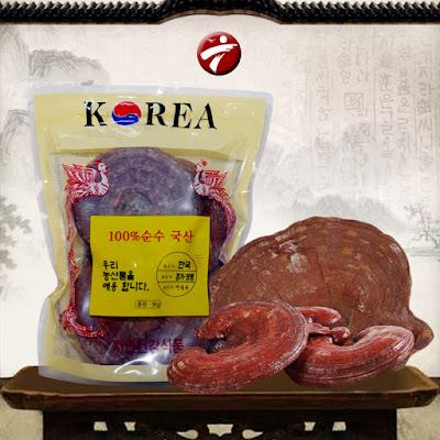 Nấm linh chi phổ biến trên thị trường hiện nay