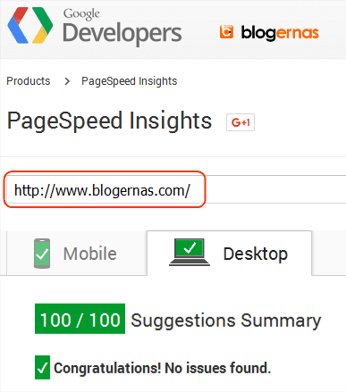 Skor PageSpeed Insights blogernas Full 100/100