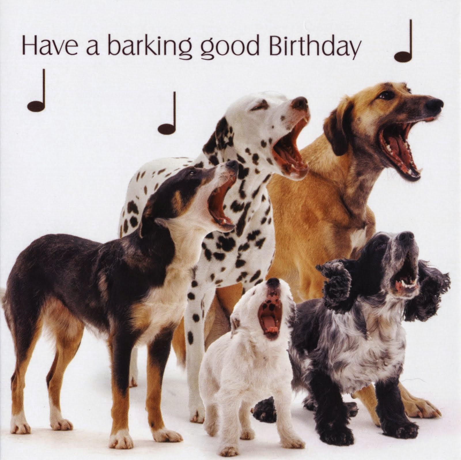 Dog Birthday Party Dog Cake
