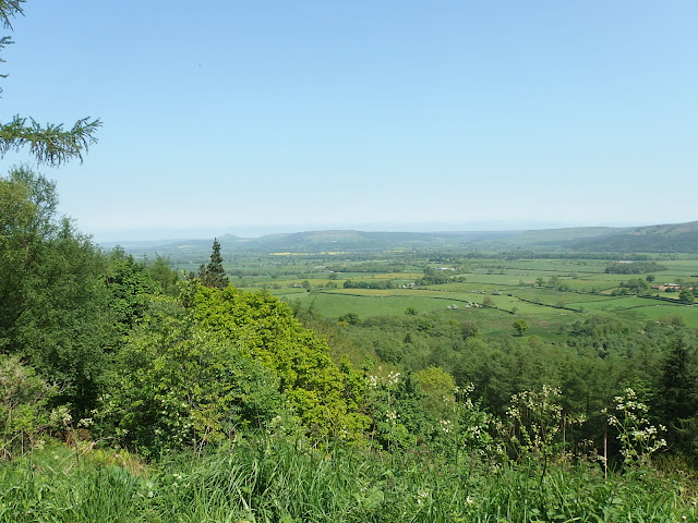 From the viewpoint at the top of Clay Bank
