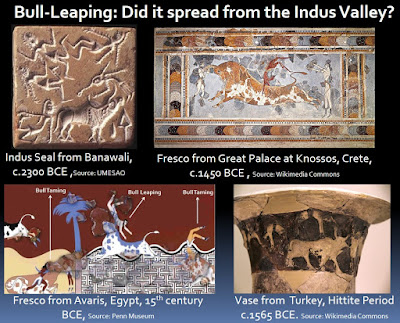 Bull leaping and bull taming sports in the ancient world which may have spread from the Indus Valley