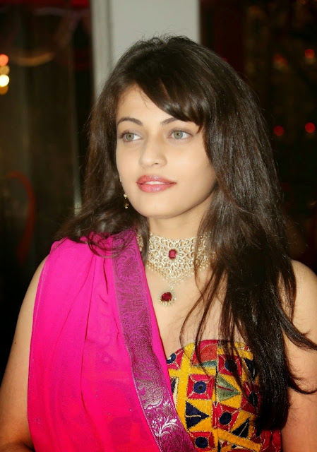 Sneha Ullal Tollywood Actress