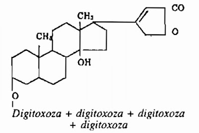 Thành phần hóa học Cây Trúc Đào - Nerium oleander - Nguyên liệu làm thuốc Chữa bệnh Tim