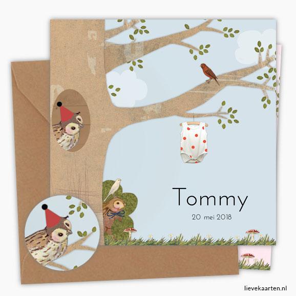https://lievekaarten.nl/geboortekaartjes/retro-geboortekaartje-tommy
