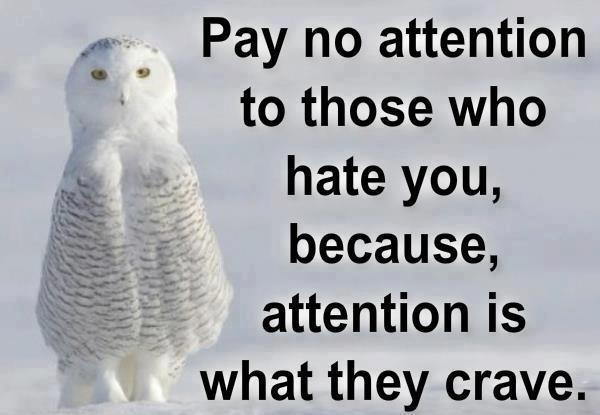 I Hate Attention Seekers Quotes: Random Musings: Pay No Attention To Those
