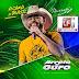 Baixe Agora O Novo CD Promocional Do Arreio De Ouro!