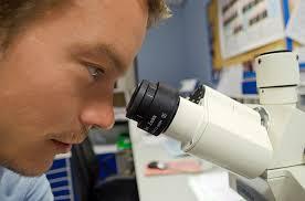Manfaat dan Bahaya Perkembangan Ilmu Biologi bagi Kehidupan