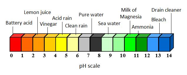 רמת החומציות של חומרים שונים על פני סקלה של סולם ה pH