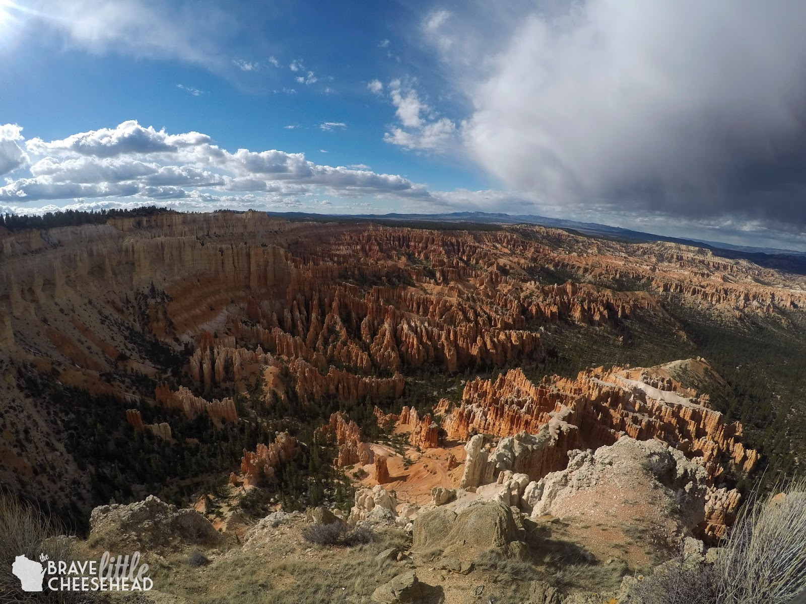 One Day in Bryce Canyon National Park | The Brave Little Cheesehead at bravelittlecheesehead.com
