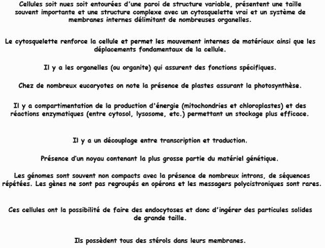 Caractéristiques des eucaryotes: