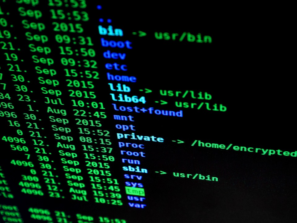 Las 5 mejores distribuciones para la seguridad y privacidad 2017