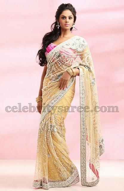 5fead6bcf38d4e Karthika Showcasing Reception Saree - Saree Blouse Patterns