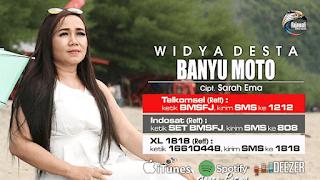 Lirik Lagu Banyu Moto (Dan Artinya) - Widya Desta