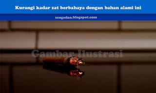 Tips buat perokok ; Kurangi kadar zat berbahaya dengan bahan alami ini
