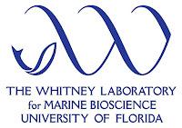 The Whitney Laboratory for Marine Bioscience
