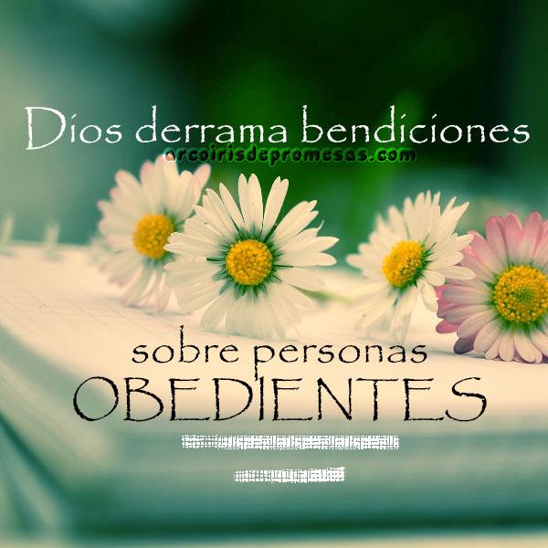 la obediencia trae bendición mensajes cristianos con imágenes