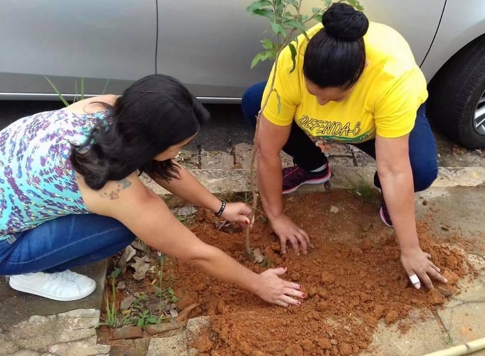 Projeto planta 42 mudas de árvores nativas em Espírito Santo do Pinhal