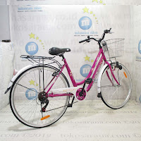 City Bike Evergreen Sakura 7 Speed 26 Inci