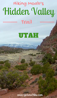 Hiking the Hidden Valley Trail, Hiking in Moab with Dogs, Hiking in Utah with Dogs, Moab, Utah