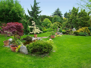 landscape design plans free