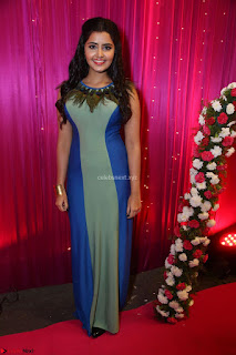 Anupama Parameswaran in lovely shaded gown ~  Exclusive 03.JPG