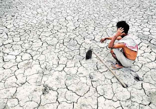 farmers committing suicide in India highest than anywhere in the world