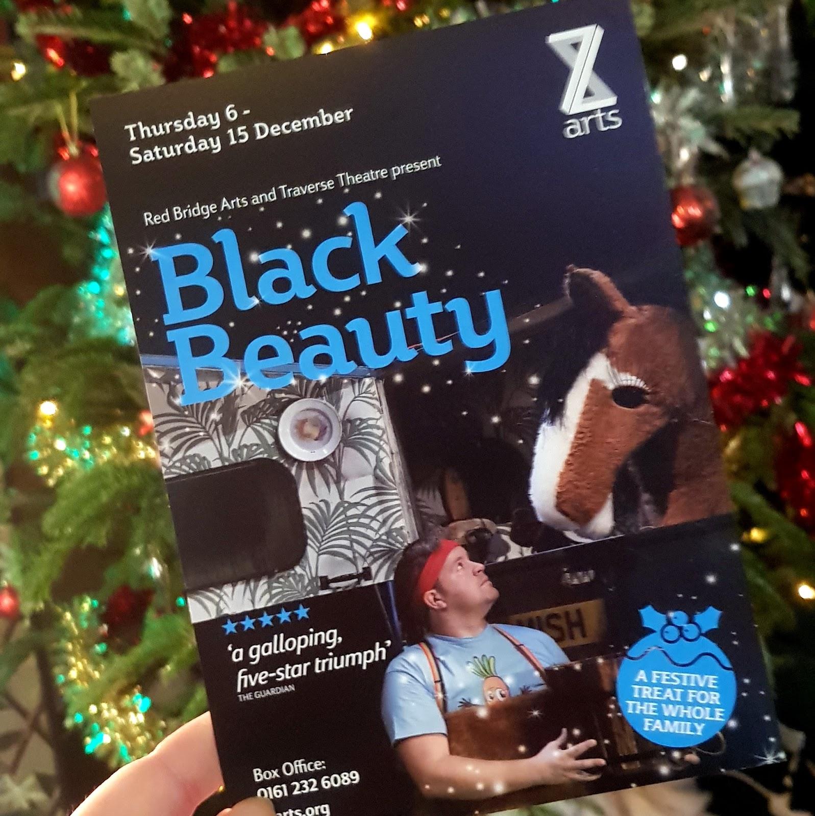 3ec226eb033 The Brick Castle  Black Beauty At Z-Arts