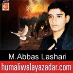 https://www.humaliwalyazadar.com/2018/09/muhammad-abbas-lashari-nohay-2019.html