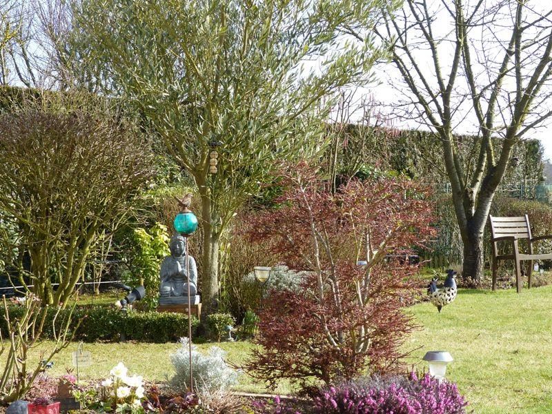 Le jardin de pacalou renaissance du jardin for Jardin renaissance