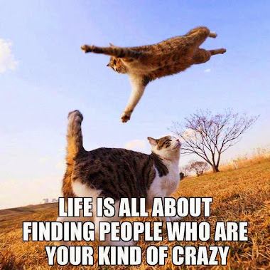 Find your kind of crazy!
