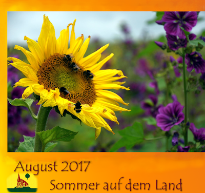 August 2017 Hohenaspe blogspot