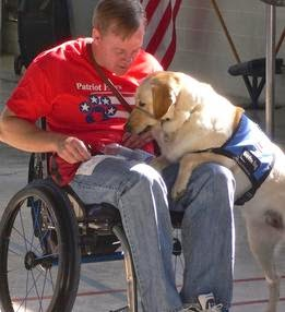 patriot paws dog and veteran