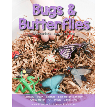Bugs and Butterflies Preschool Theme