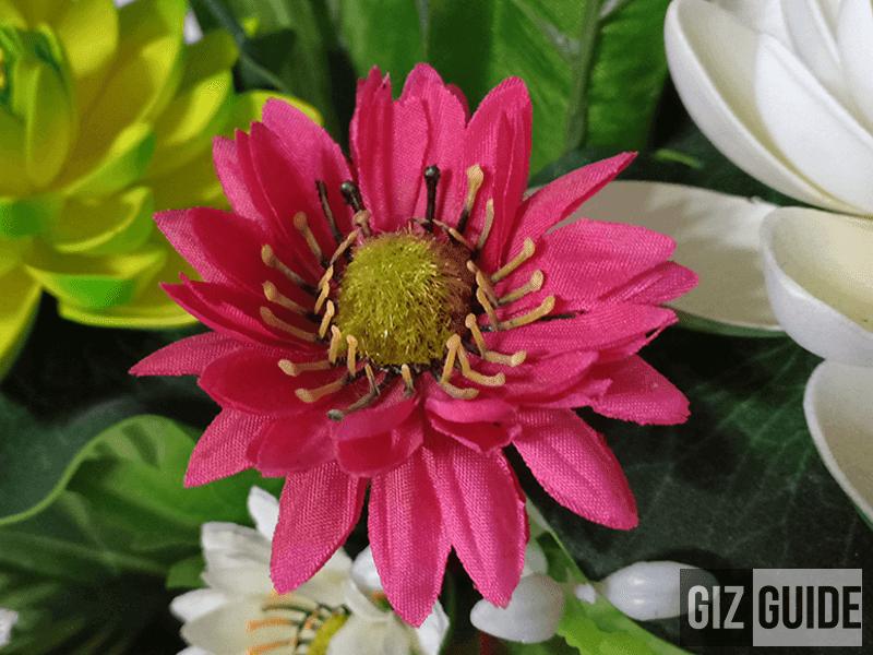 Close-up F7
