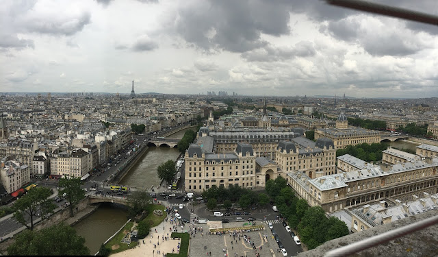 Paris cityscape from the top of Notre Dame