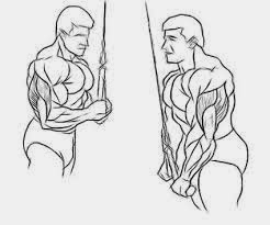 Can Cables Build Muscle