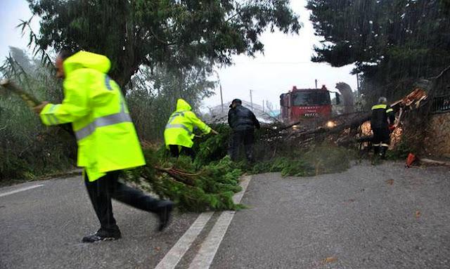 Θεσπρωτία: Ποιες περιοχές στη Θεσπρωτία χτύπησε περισσότερο η κακοκαιρία και έχουν έκτακτη ανάγκη...