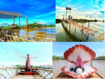 spot foto nhutan mangrove kulon progo d.i. yogyakarta
