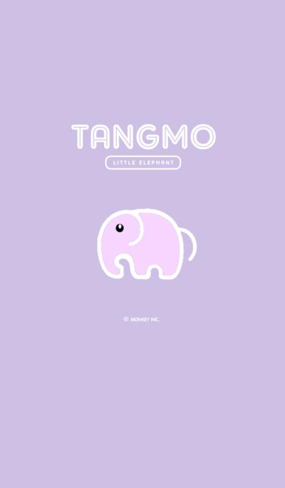 TANGMO LITTLE ELEPHANT