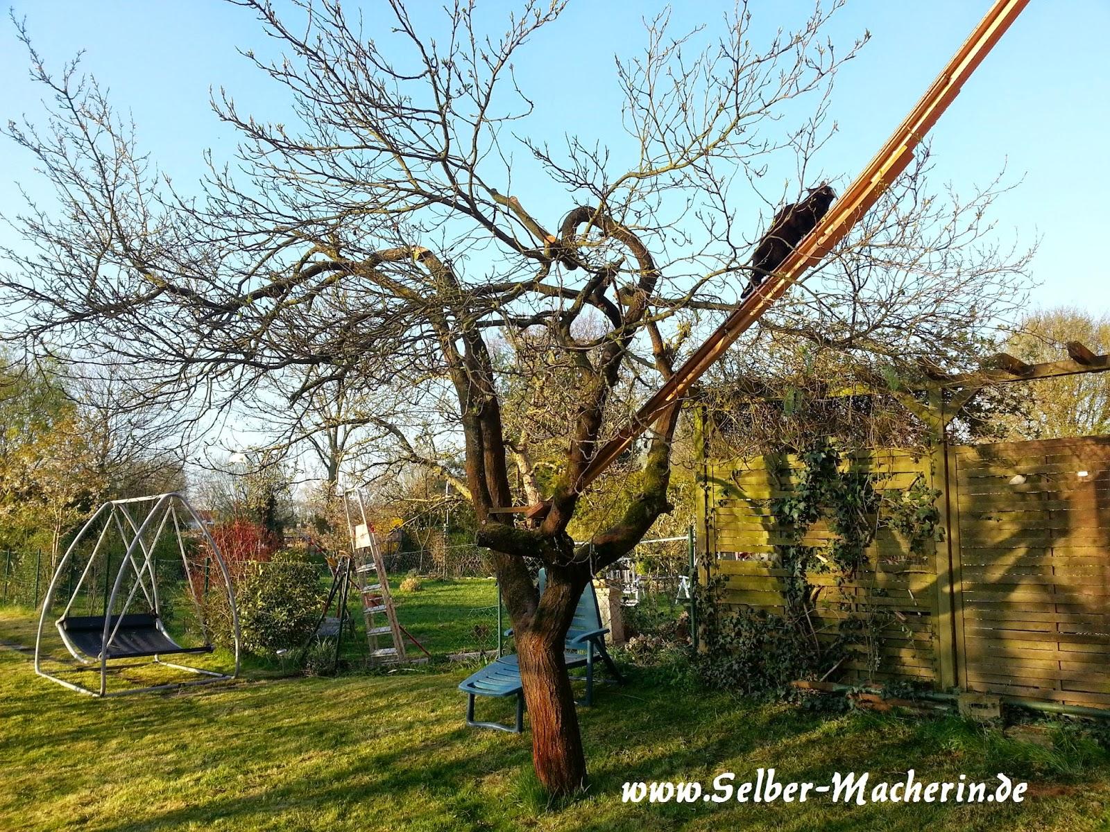 Selber Macherin Gartentagebuch 19 04 2015 1 Hochbeet Bepflanzt