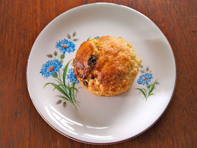 Perfect scone on plate