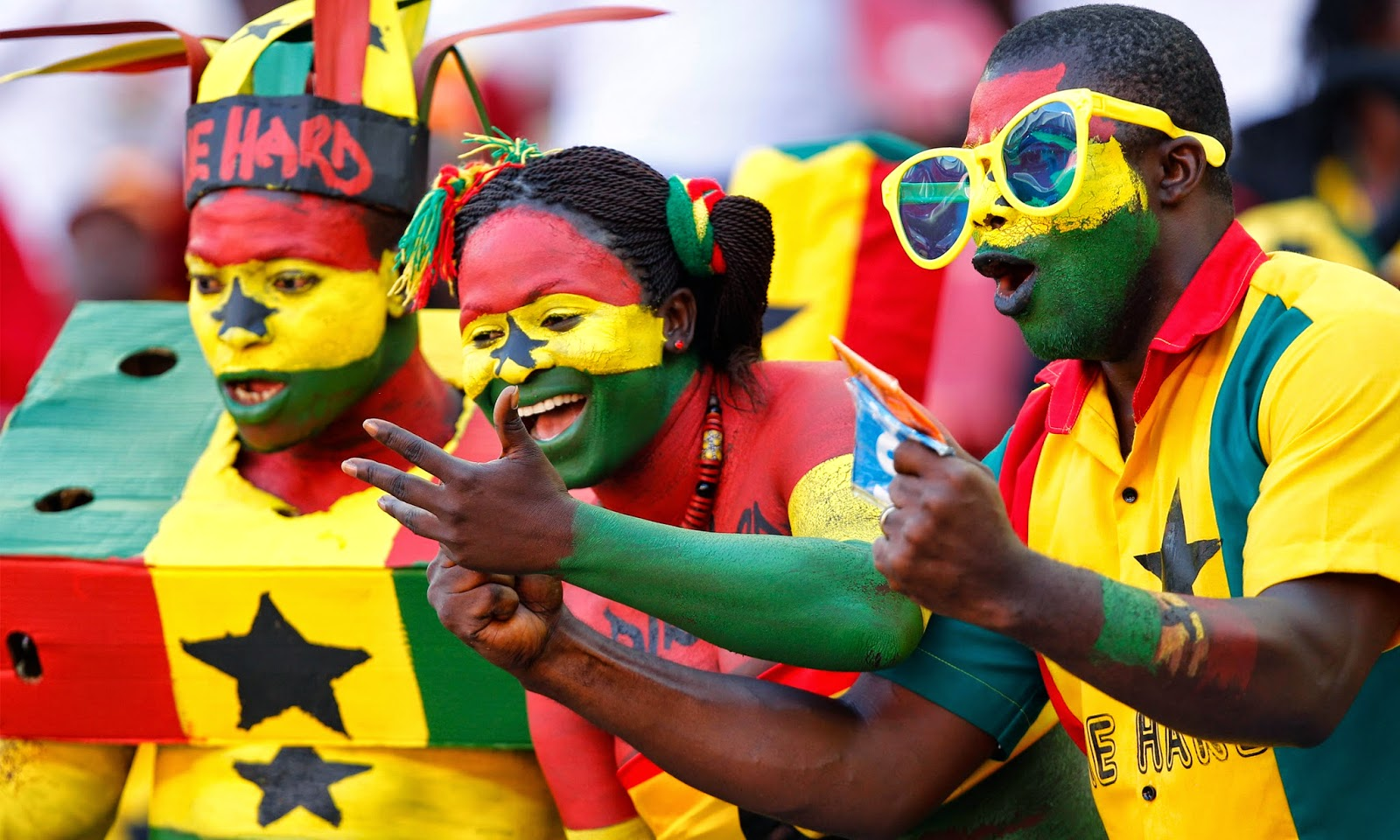 FIFA World Cup 2014 Fans
