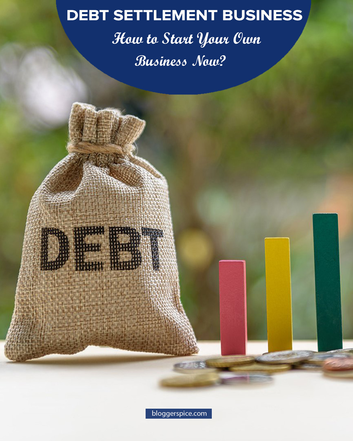 Start a debt settlement company | Start A Debt Settlement Business