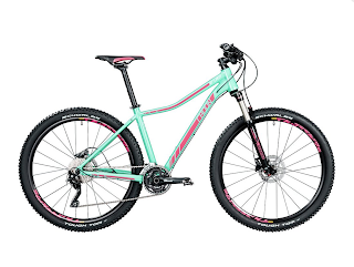 Stolen Bicycle - Radon ZR 7.0